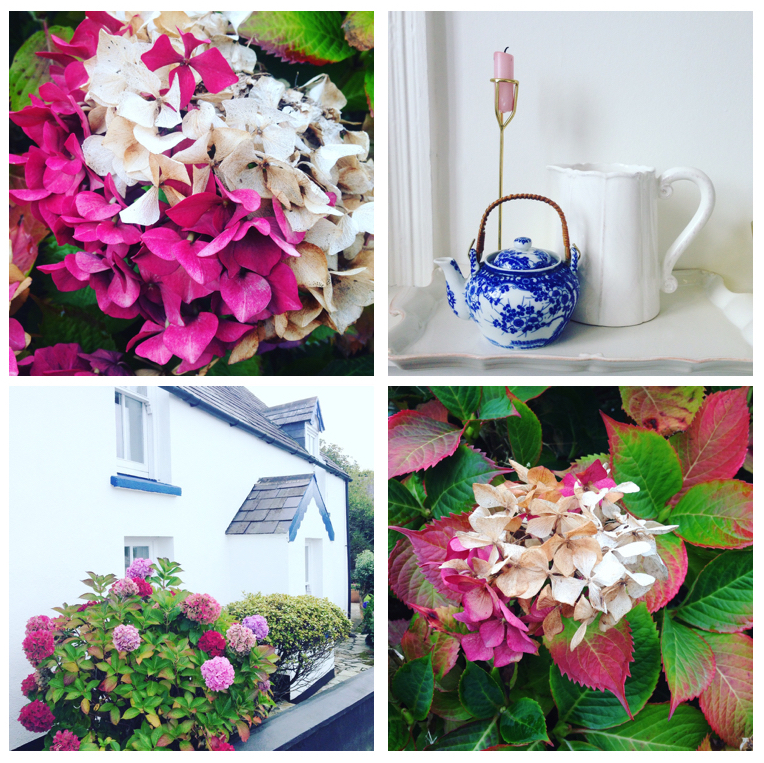 A seasonal autumn montage by Amalfi White Living