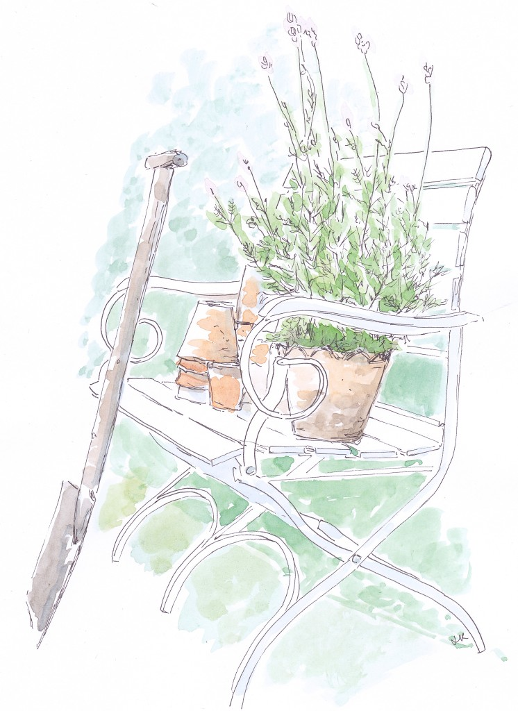 Illustration by Louise Keane of Amalfi White Living in pen and ink with watercolour of a pretty garden bench with terracotta pots